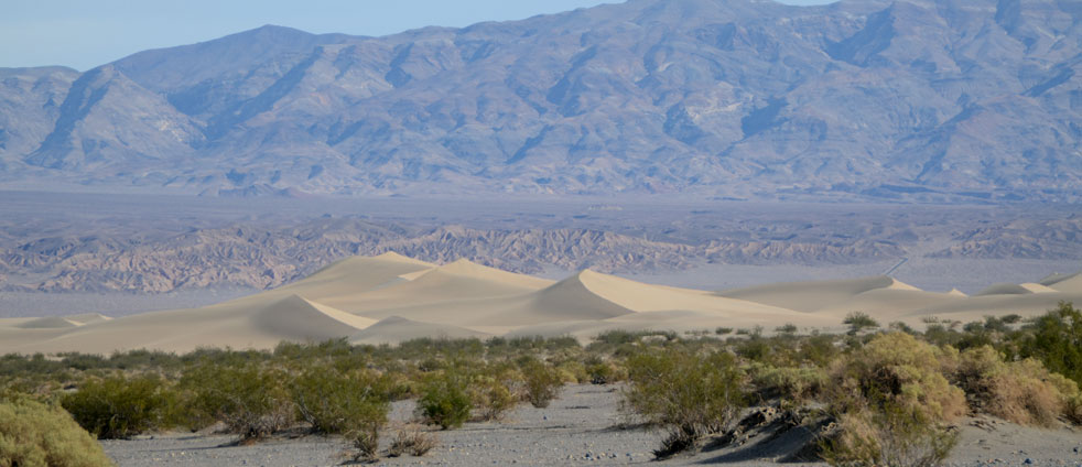 death-valley-mesquite-sand-dunes